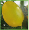 Yellow Paste